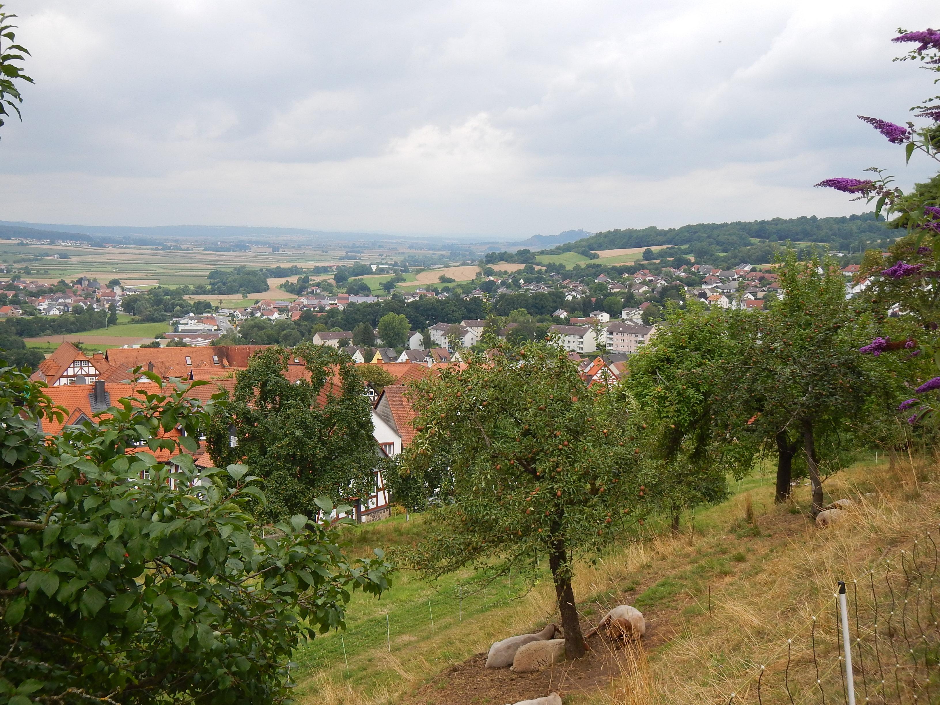 2016-07-28_Homberg